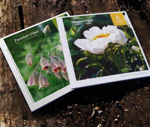 Produktbild Katalog-Kombi: Zwiebel-Fibel und Päonien-Fibel