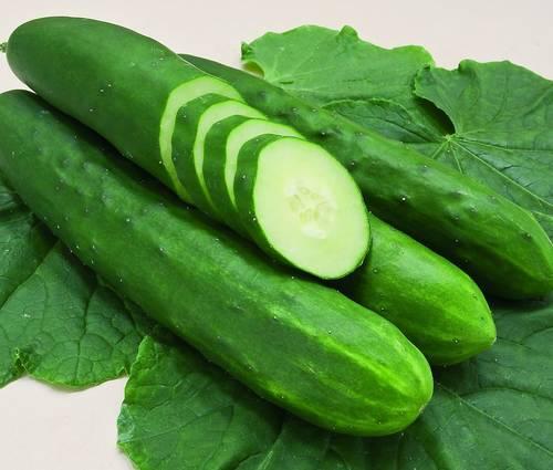 Produktbild Saatgut: Salatgurke 'Tanja'