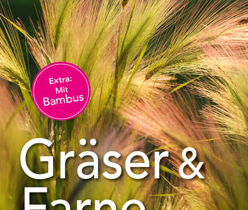 Produktbild Gräser und Farne