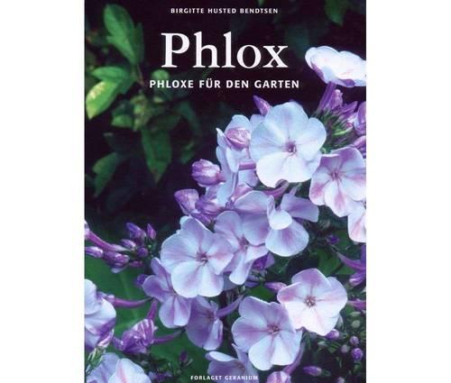 Produktbild Phlox